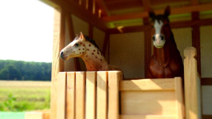Die Pferdeboxen besitzen Schiebetore- Pferdestall für Schleich