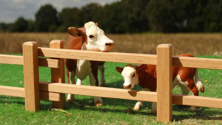 Oder als Kuhweide für Schleich Tiere. Das Holzzaun Set für Modell Pferde- Im Maßstab von Schleichpferden