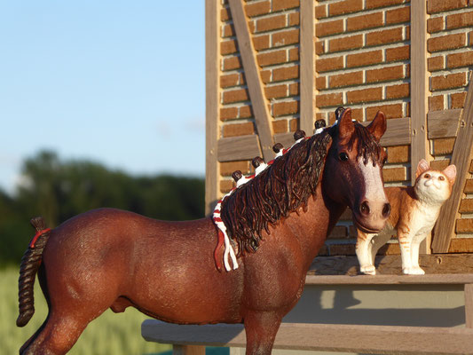 Schleich Pferde auf dem Bauernhof