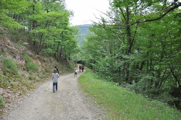 la nature est propice à la randonnée et à la détente.