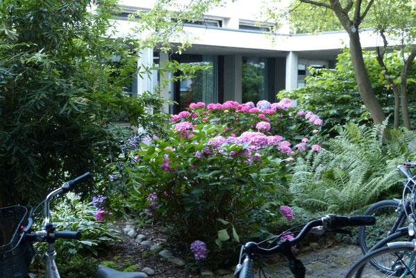 Atrium - vielen Dank für die Blumen (u.A. an Gertrud)