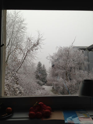 Winterblick vom Zimmer aus