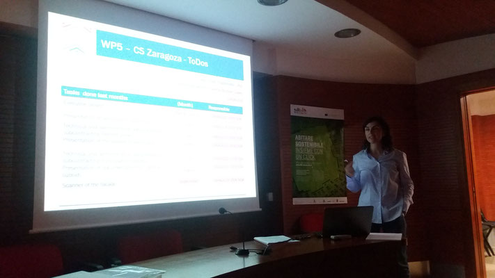 Presentation of the Zaragoza demo case