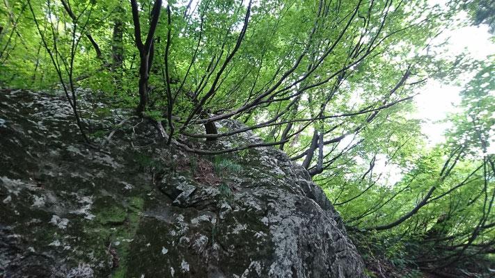 三合稲荷の大岩