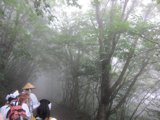 霧の中を成就へ