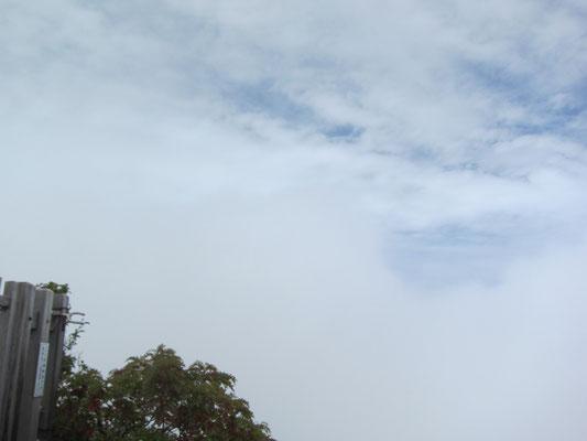 青空が見えます 秋雨前線が四国上にあるのに・・