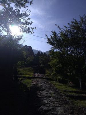 銅鳥居からの参道