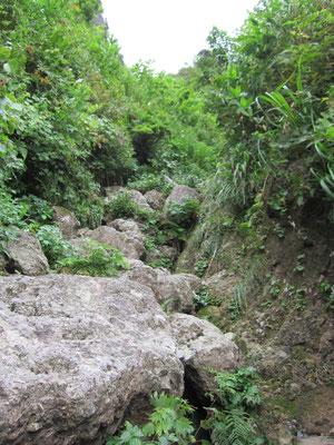 岩が飛んできた枯れ沢