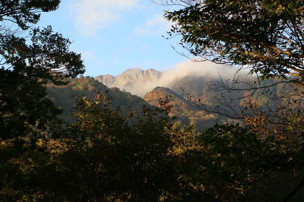 木々の間から頂上弥山を望む