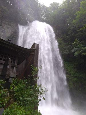 清滝 連日の雨で22日の倍以上の水量でした