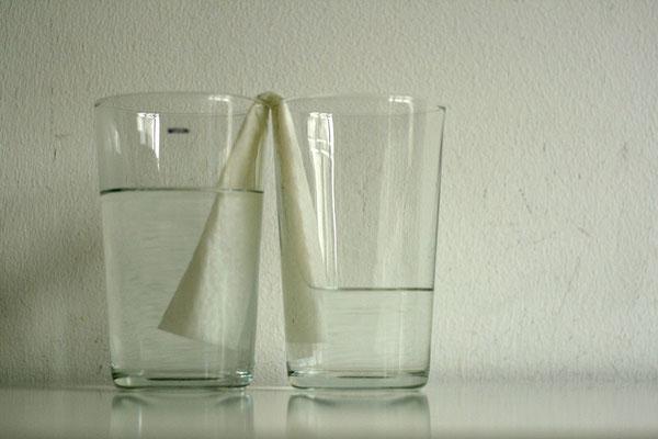 Wasser, Experiment, Kappillareffekt, Adhäsion, Kleine Forscher