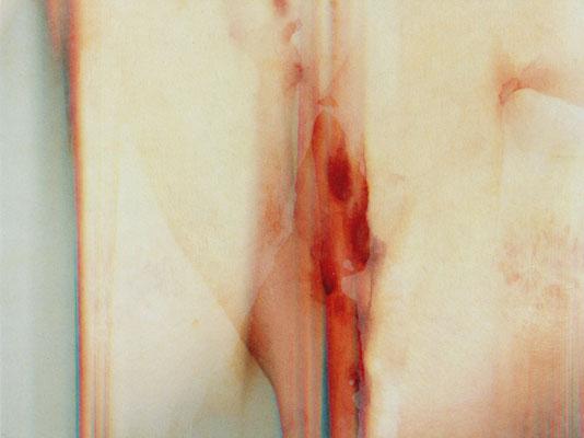 Feel of Grope 4 | 27×36×2cm  | 2002 | inkjet print,drawing,screenprint