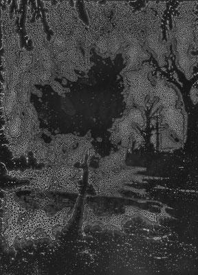 Seepage ・ Black ・ 11|105×145cm|2005|digital print