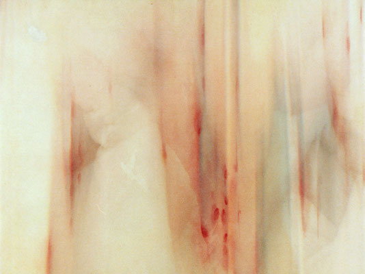 Feel of Grope 3 | 27×36×2cm  | 2002 | inkjet print,drawing,screenprint