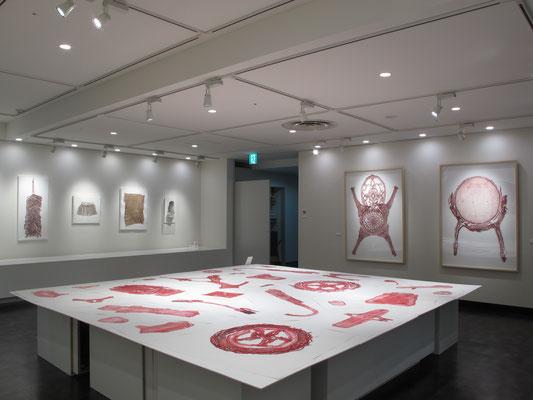 蘇生するイメージ|個展|2014 年|髙島屋大阪店6階 ギャラリーNEXT
