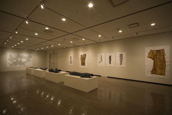 現代美術レジデンスプログラム 皮膚感覚 阿部大介展|2015年|美濃加茂市民ミュージアム