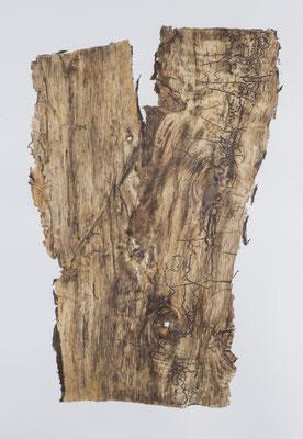 Skin of Tree 20|176×120.5cm|2015|craft glue,oil ink,paper