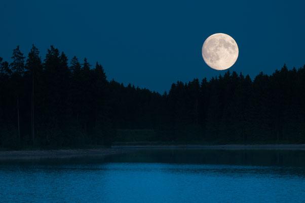 Mond und Sterne über dem Harz: Mondaufgang 2013 über dem Ziegenberger Teich (Buntenbock)