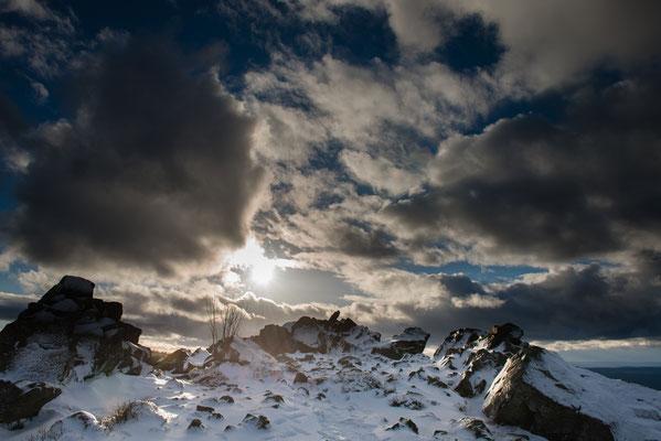 Wolfswarte im Winter-2