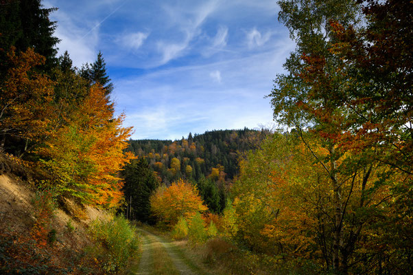 Berge, Felsen und Täler: Im Romketal