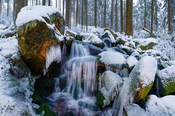 Talsperren, Teiche, Bäche: Kellwasser_3