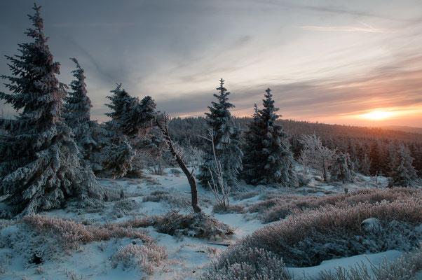 Berge, Felsen und Täler: Bruchberg an der Wolfswarte