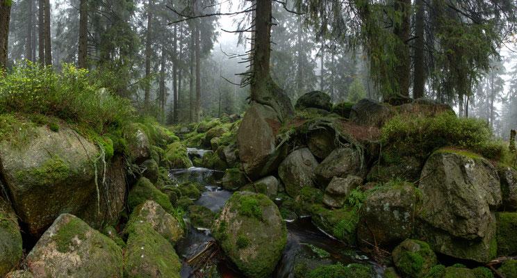 Talsperren, Teiche, Bäche: an der Felsenbrücke