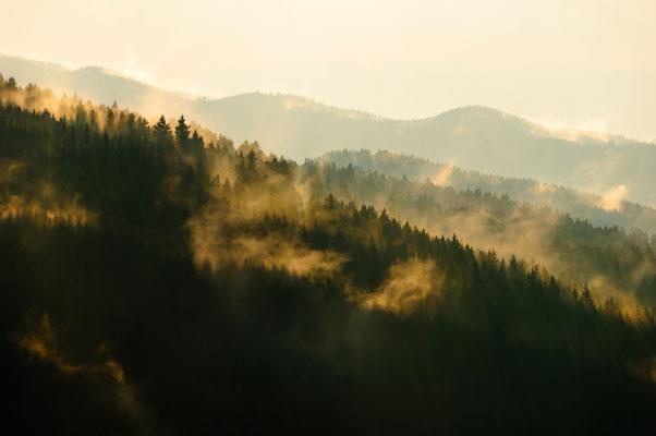 Berge, Felsen und Täler: Acker_Nebelschwaden