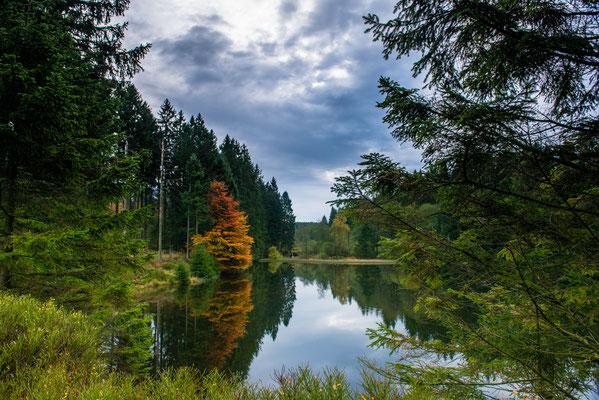 Fortuner Teich