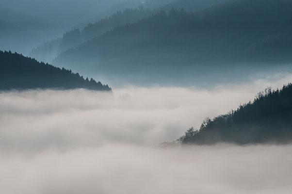 Impressionen_Gosetal-Nebel_1