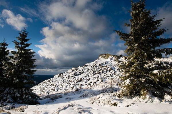 Wolfswarte im Winter-1