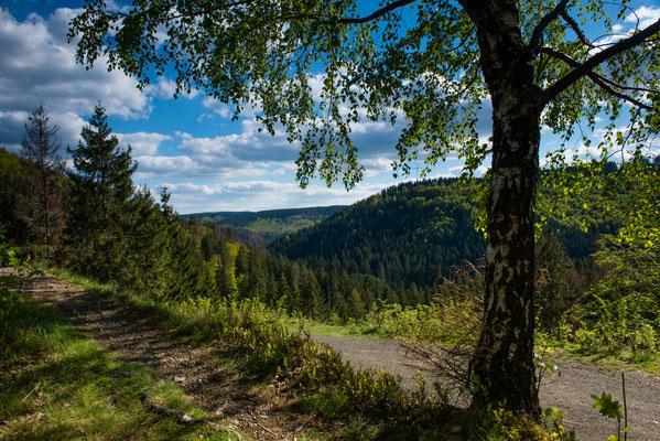 Berge, Felsen und Täler: odertal19A_03-4