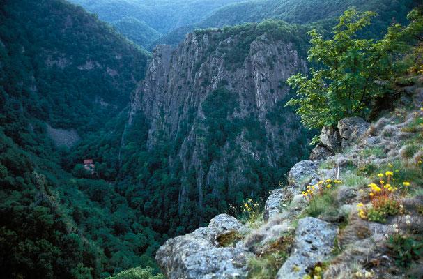 Berge, Felsen und Täler: Bodetal_2