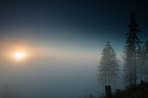 Impressionen_Gosetal-Nebel_2