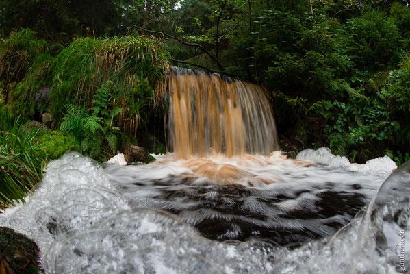 Talsperren, Teiche, Bäche: Am Bruchberg, Zuflluss in den Dammgraben