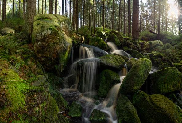Talsperren, Teiche, Bäche: Kellwasser_2