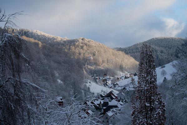 Lerbach im Winter 2017