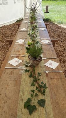 Kräuter-/ Salat- Dekoration