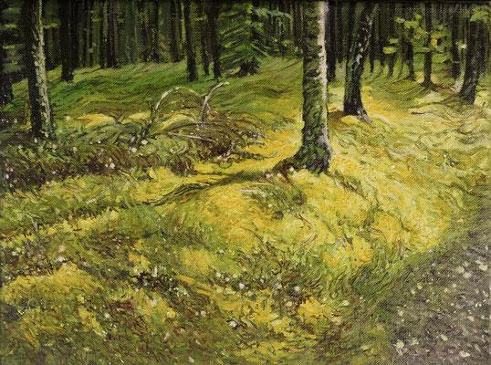 Kociewski las, olej na płótnie 30x40cm, 2020 rok