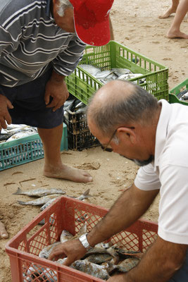 FISHERMAN - MEIA PRAIA LAGOS 2006 -9200649