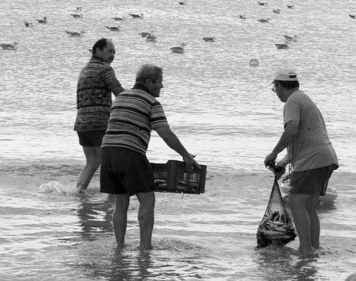 FISHERMAN - MEIA PRAIA LAGOS 2006 -9200658