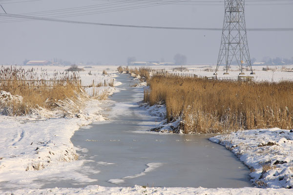 Winter Waterland 2010 - bestelnr. 2010005