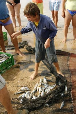 FISHERMAN - MEIA PRAIA LAGOS 2006 -9200639