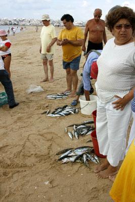 FISHERMAN - MEIA PRAIA LAGOS 2006 -9200654