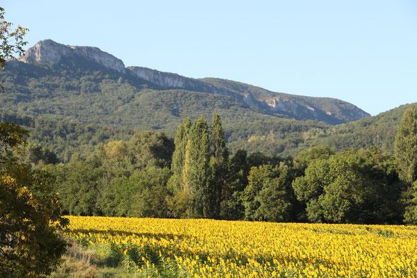 Paysages autour des Bergerons