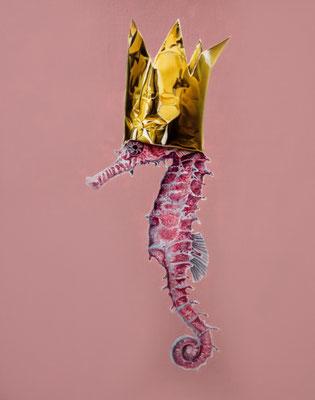 DAVID UESSEM  I  Born to be Wild  I  Öl auf Leinwand  I  40 x 50 cm