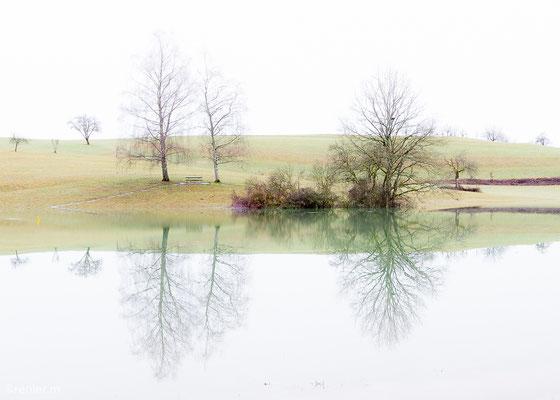 Mystische Spiegelung am Eichener See