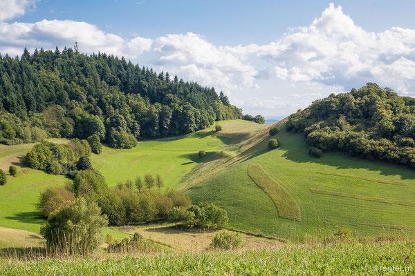 im Kaiserstuhl bei Oberbergen