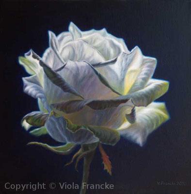 'Luna Plena' - 40 x 40 cm (leider gestohlen)