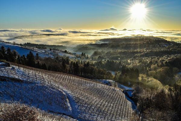 Ausblick von der Terrasse im Winter (und allen Zimmern) / view from the terrace winter time (and all rooms)